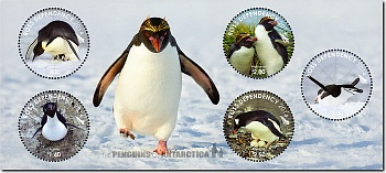 2014 Ross Dependency - The Penguins of Antarctica